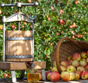 WET rebate win for craft cider makers