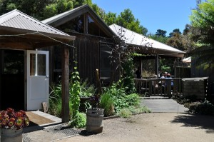 Image of the Red Hill Brewery cafe exterior