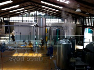 The internal view of the Three Boys Brewery shed space