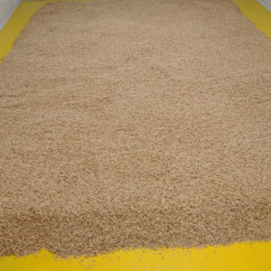 Germinating-Floor-House-of-Malt