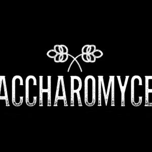 SACCHAROMYCES-beer-cafe